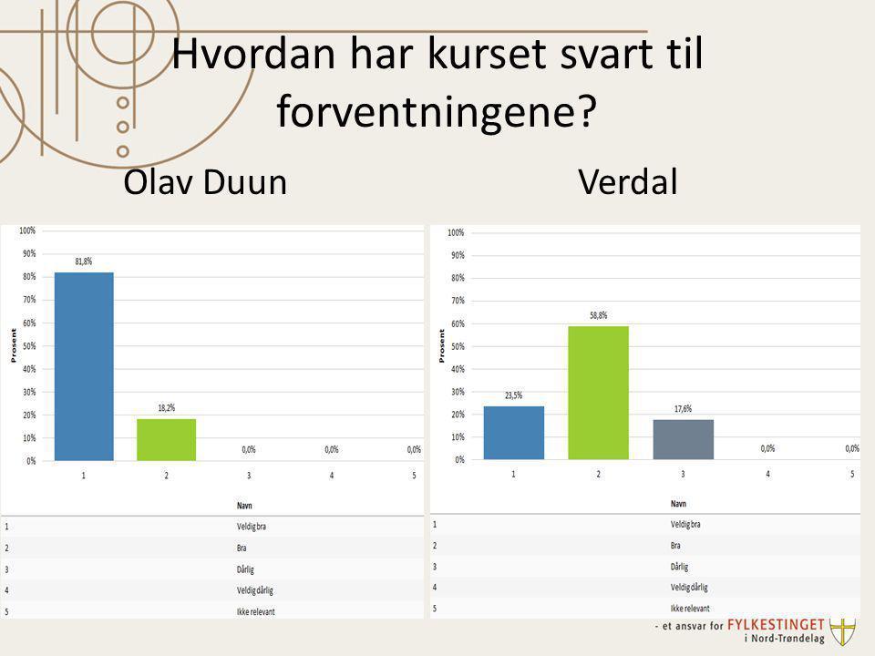 Hvordan har kurset svart til forventningene? Olav DuunVerdal