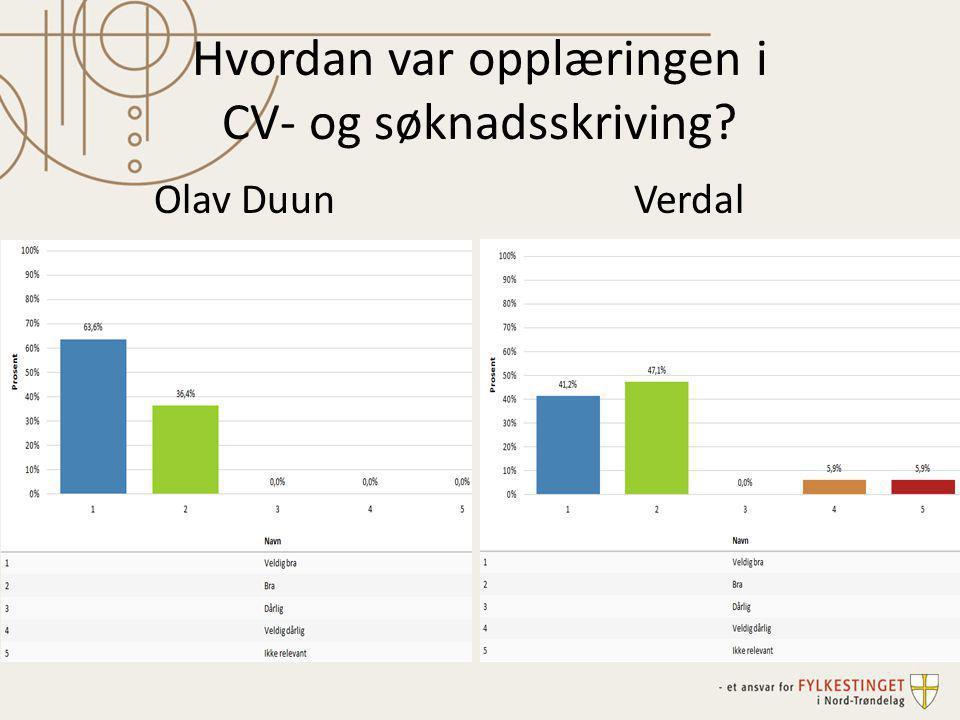 Hvordan var opplæringen i CV- og søknadsskriving? Olav DuunVerdal