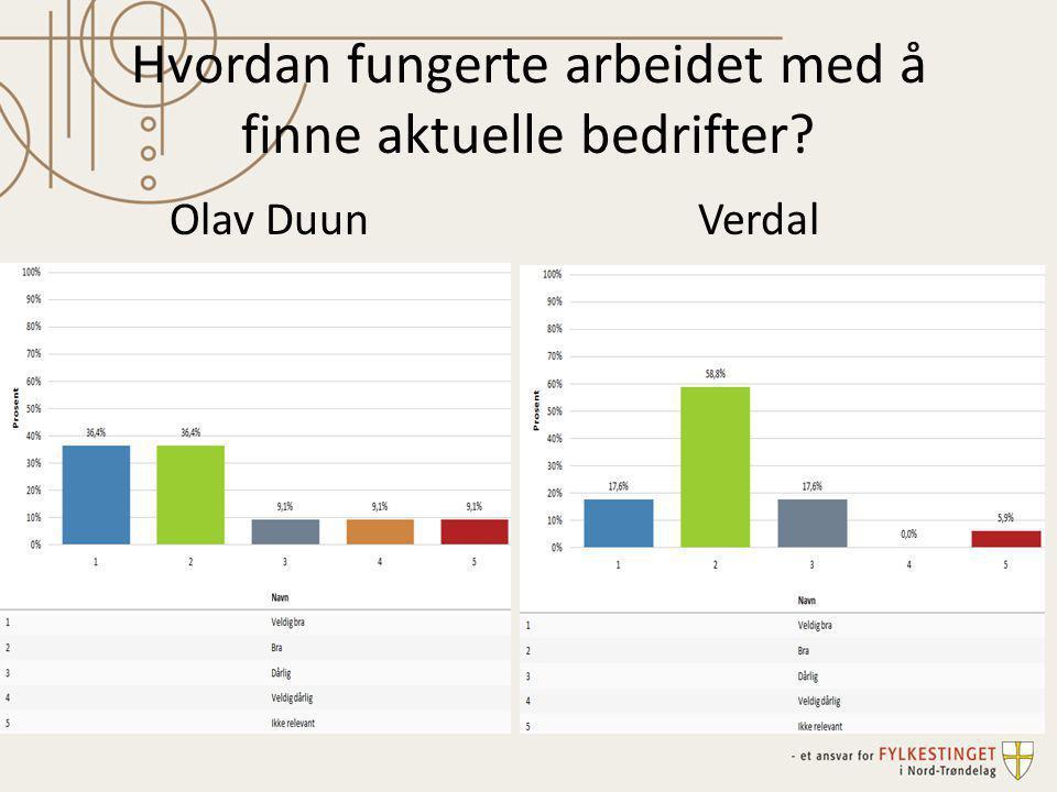 Hvordan fungerte arbeidet med å finne aktuelle bedrifter? Olav DuunVerdal