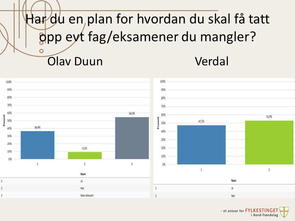 Har du en plan for hvordan du skal få tatt opp evt fag/eksamener du mangler? Olav DuunVerdal