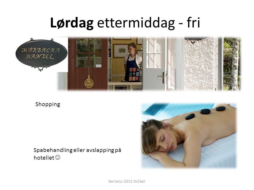 Lørdag ettermiddag - fri Spabehandling eller avslapping på hotellet Shopping Bertetur 2013 W.Ekeli