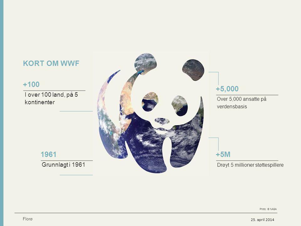KORT OM WWF I over 100 land, på 5 kontinenter +100 Grunnlagt i 1961 1961 Over 5,000 ansatte på verdensbasis +5,000 Drøyt 5 millioner støttespillere +5