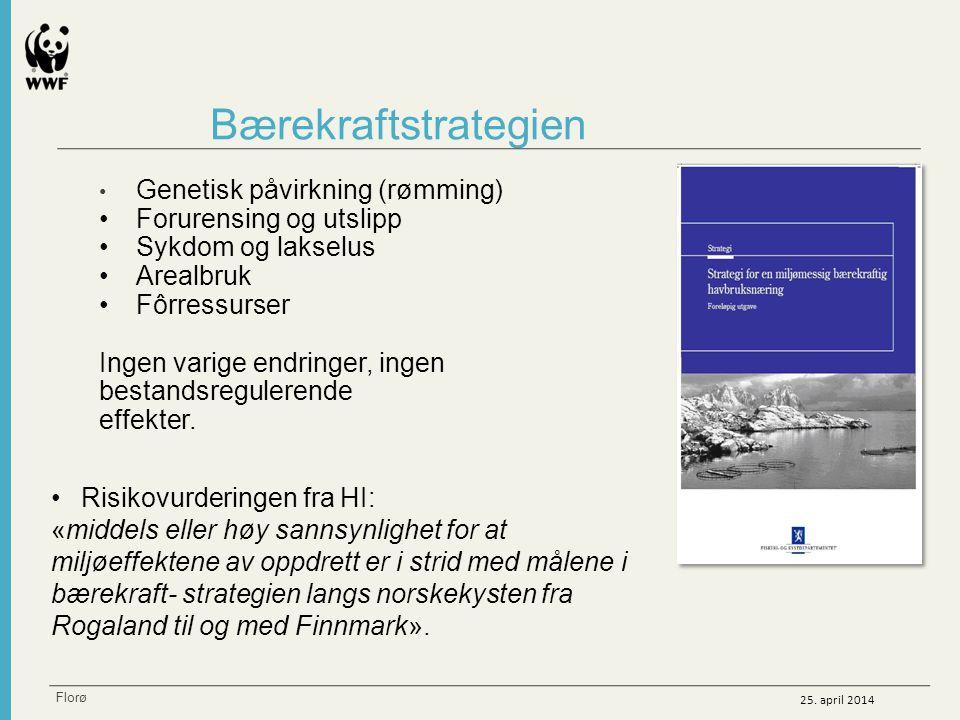 Bærekraftstrategien Genetisk påvirkning (rømming) Forurensing og utslipp Sykdom og lakselus Arealbruk Fôrressurser Ingen varige endringer, ingen besta