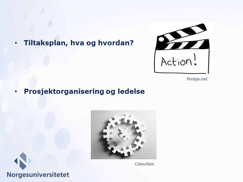 Tiltaksplan, hva og hvordan? Prosjektorganisering og ledelse Pmtips.net Colourbox
