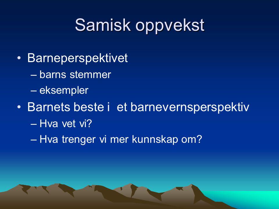 Det er lite litteratur og forskning knyttet opp mot samiske barn og natur.