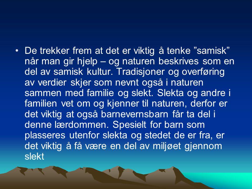 """De trekker frem at det er viktig å tenke """"samisk"""" når man gir hjelp – og naturen beskrives som en del av samisk kultur. Tradisjoner og overføring av v"""