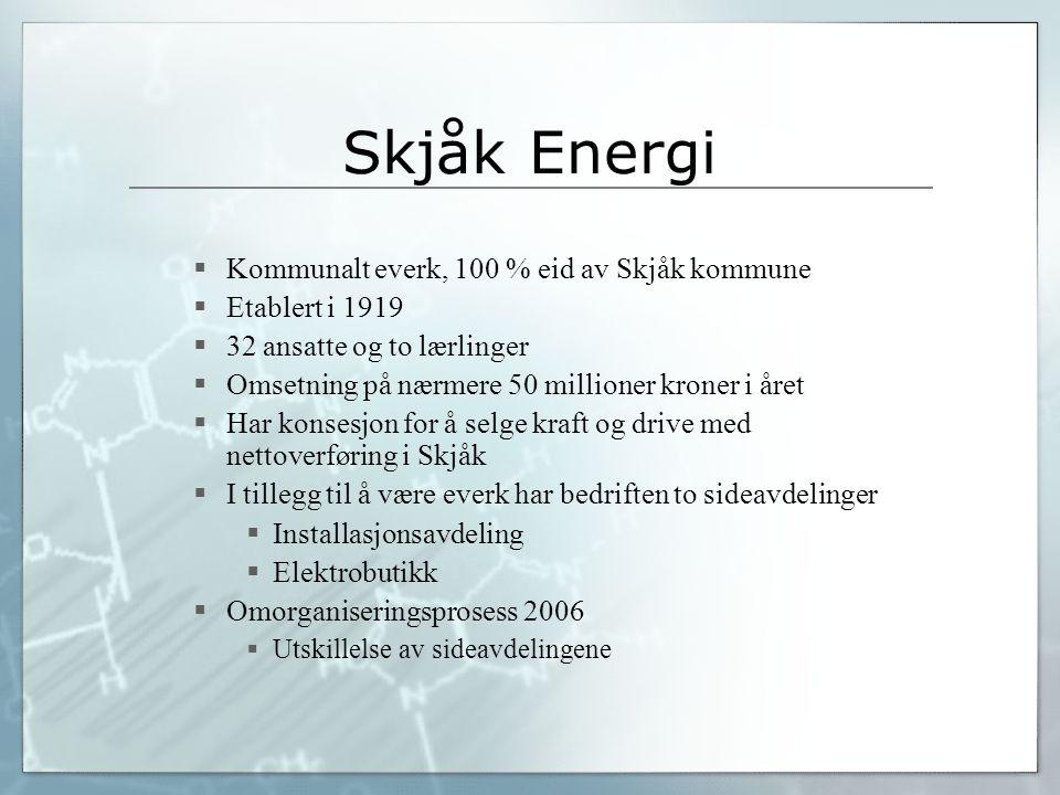 Skjåk Energi  Kommunalt everk, 100 % eid av Skjåk kommune  Etablert i 1919  32 ansatte og to lærlinger  Omsetning på nærmere 50 millioner kroner i