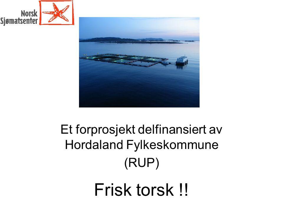 Mål for Frisk Torsk: Effektmål: Bedre kunnskap, rutiner og behandling for å redusere sykdomsproblemet og medisinbruken hos torsk i oppdrett, med nasjonalt fokus.