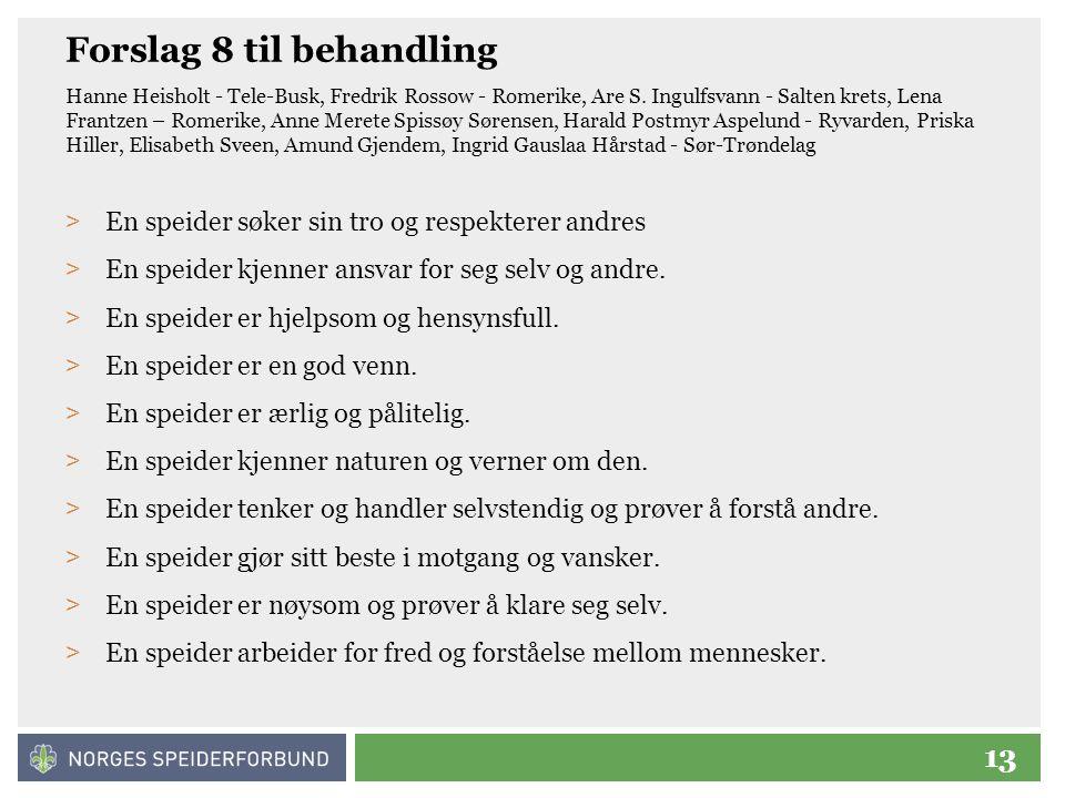 13 Forslag 8 til behandling Hanne Heisholt - Tele-Busk, Fredrik Rossow - Romerike, Are S.