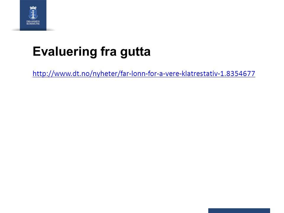 Evaluering fra gutta http://www.dt.no/nyheter/far-lonn-for-a-vere-klatrestativ-1.8354677