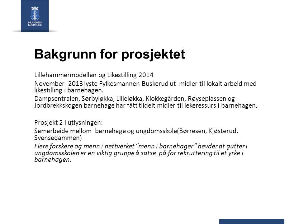 Bakgrunn for prosjektet Lillehammermodellen og Likestilling 2014 November -2013 lyste Fylkesmannen Buskerud ut midler til lokalt arbeid med likestilli