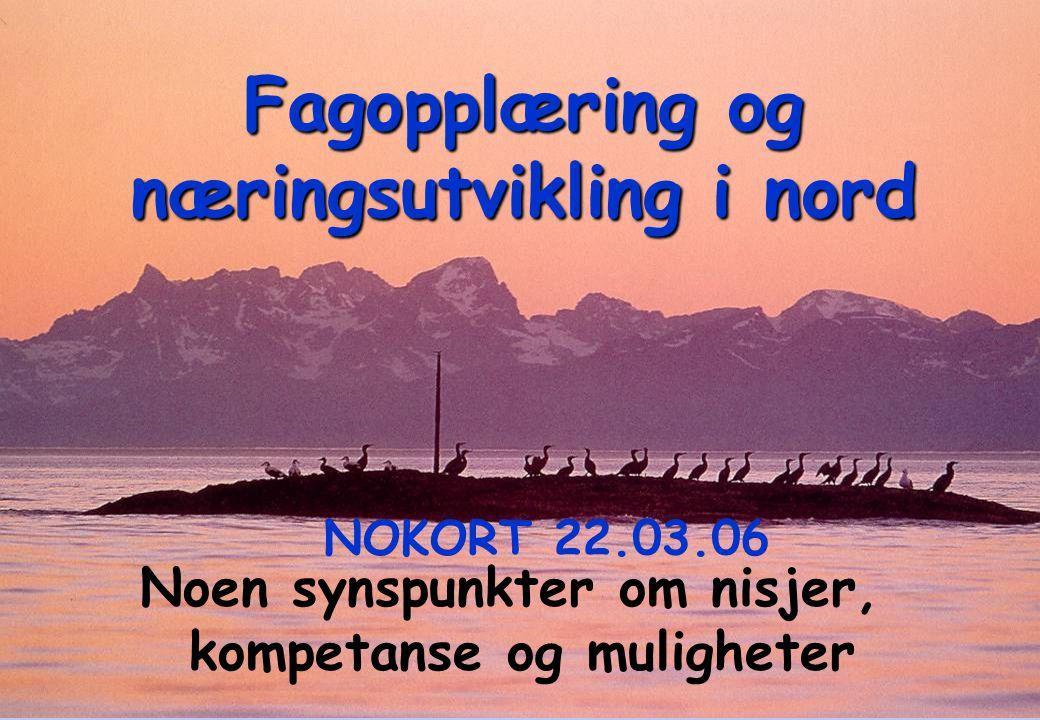 Fagopplæring og næringsutvikling i nord Noen synspunkter om nisjer, kompetanse og muligheter NOKORT 22.03.06