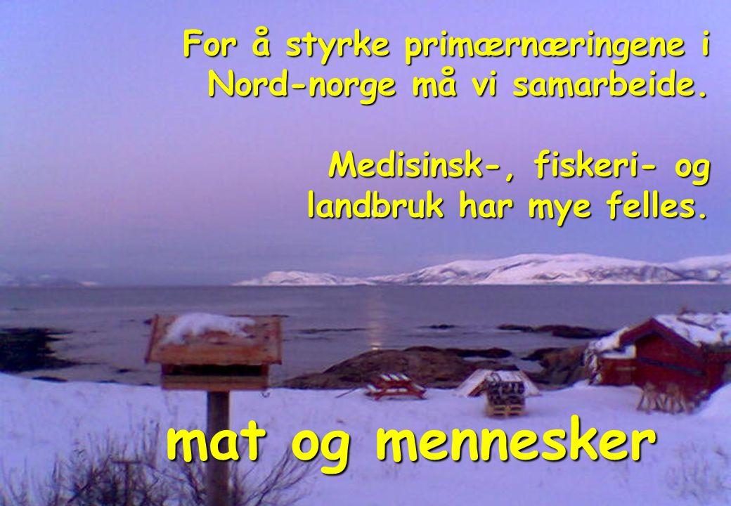For å styrke primærnæringene i Nord-norge må vi samarbeide.