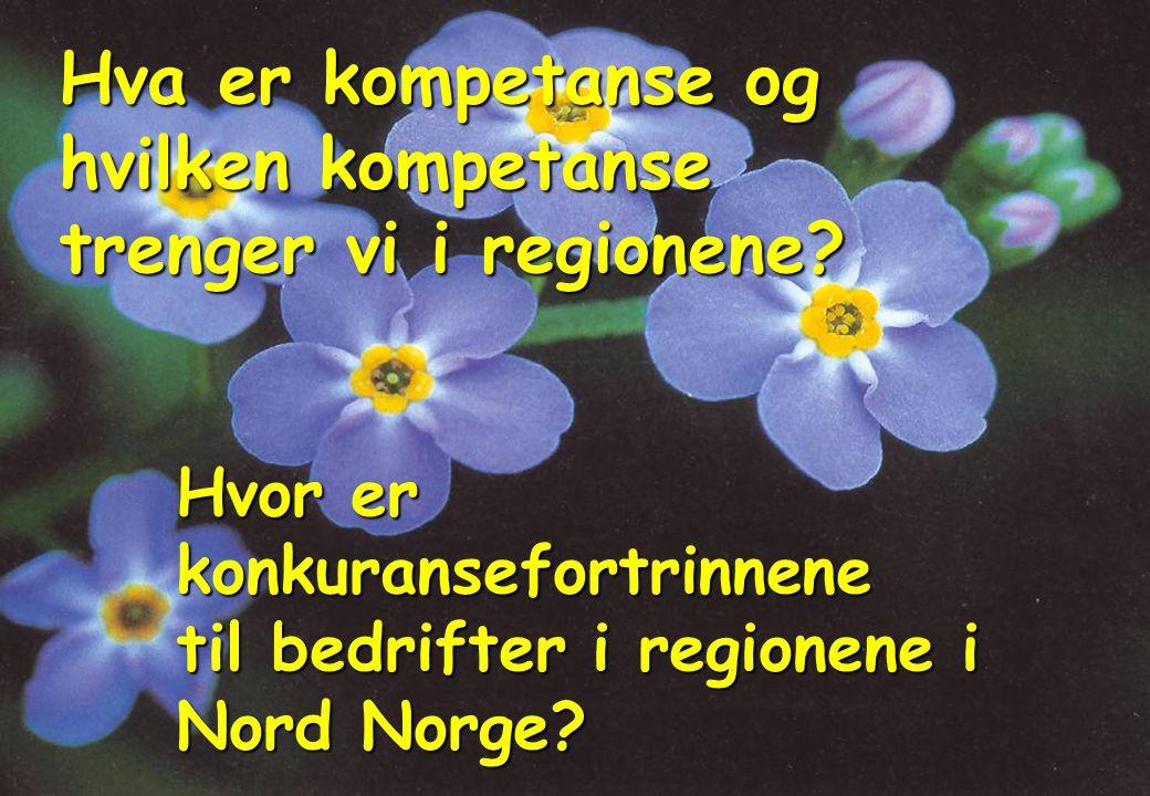 Hva er kompetanse og hvilken kompetanse trenger vi i regionene.