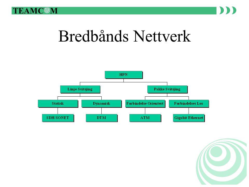 TEAMC M Løsninger over IP Fjernkontroll Telefoni Relevern Alt kan løses over IP, men det er ikke nødvendigvis alltid riktig løsning