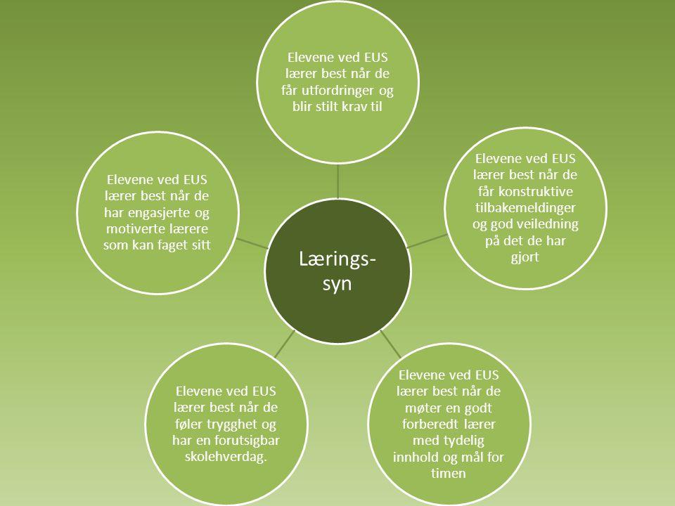 Lærings- syn Elevene ved EUS lærer best når de får utfordringer og blir stilt krav til Elevene ved EUS lærer best når de får konstruktive tilbakemeldi
