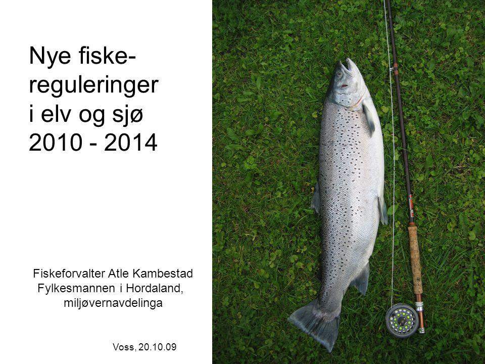 Nye fiske- reguleringer i elv og sjø 2010 - 2014 Fiskeforvalter Atle Kambestad Fylkesmannen i Hordaland, miljøvernavdelinga Voss, 20.10.09