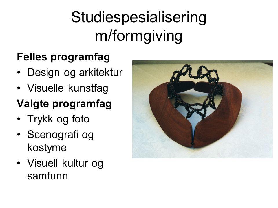 Studiespesialisering m/formgiving Felles programfag Design og arkitektur Visuelle kunstfag Valgte programfag Trykk og foto Scenografi og kostyme Visue