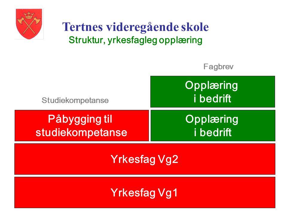 Tertnes videregående skole Struktur, yrkesfagleg opplæring Yrkesfag Vg1 Yrkesfag Vg2 Opplæring i bedrift Fagbrev Påbygging til studiekompetanse Studie