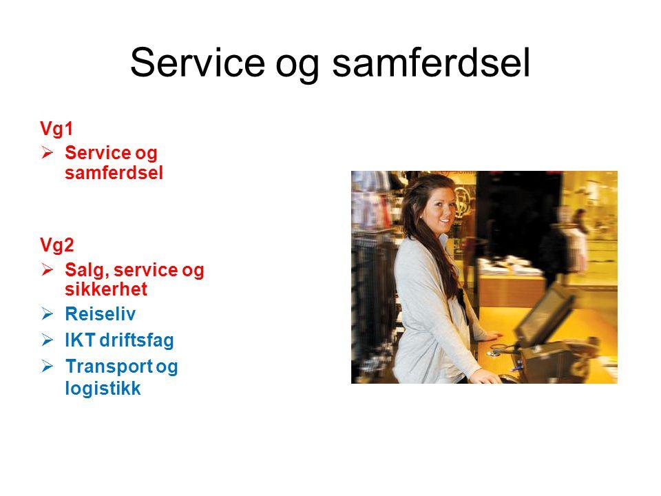 Service og samferdsel Vg1  Service og samferdsel Vg2  Salg, service og sikkerhet  Reiseliv  IKT driftsfag  Transport og logistikk