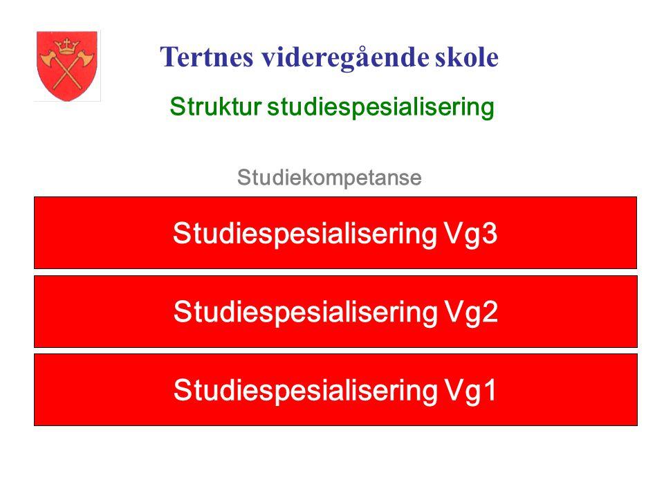 Struktur studiespesialisering Studiespesialisering Vg1 Studiespesialisering Vg2 Studiespesialisering Vg3 Studiekompetanse Tertnes videregående skole