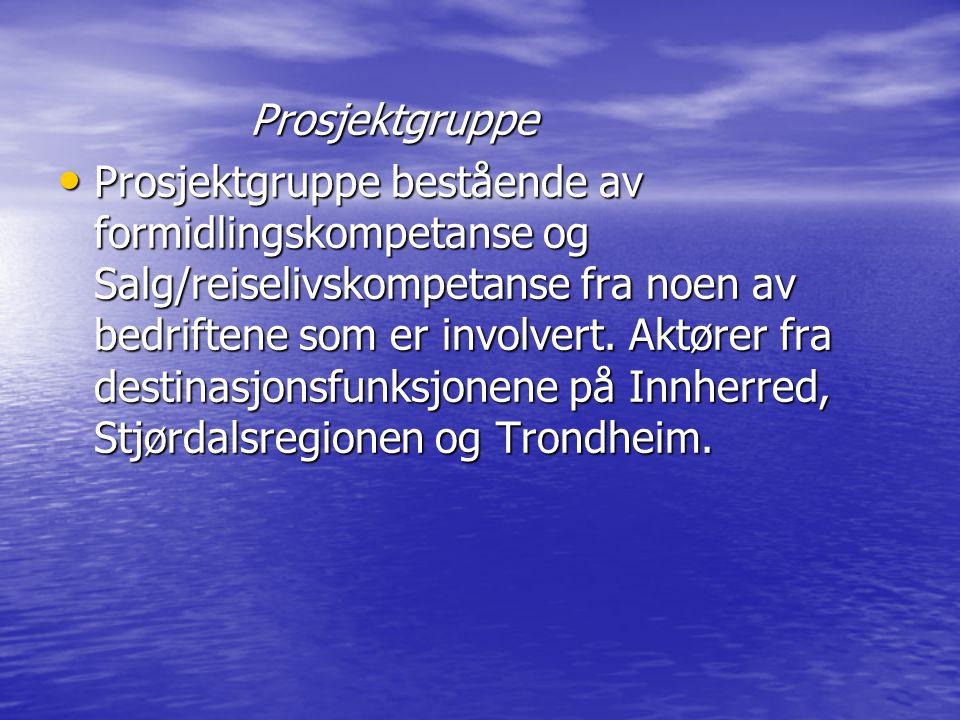 Prosjektledelse Styringsgruppe nasjonal satsing: Styringsgruppe nasjonal satsing:SNK Frostatingskommunene med 2 repr.
