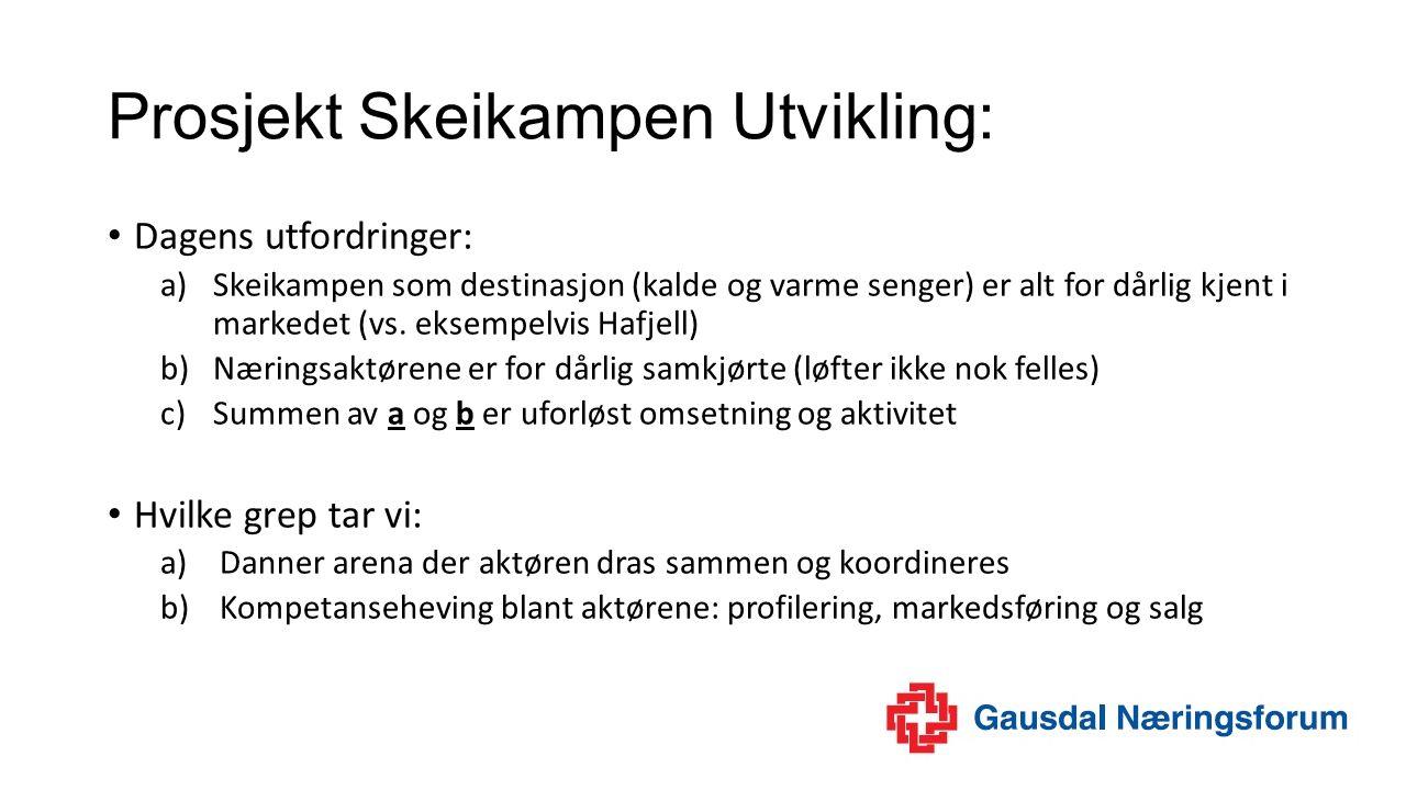 Prosjekt Skeikampen Utvikling: Dagens utfordringer: a)Skeikampen som destinasjon (kalde og varme senger) er alt for dårlig kjent i markedet (vs.