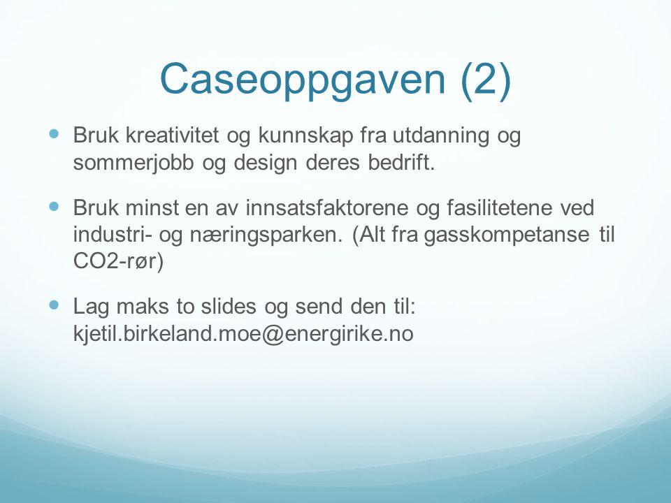 Caseoppgaven (2) Bruk kreativitet og kunnskap fra utdanning og sommerjobb og design deres bedrift.