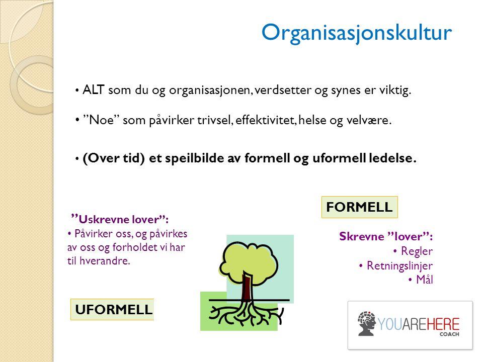 """Organisasjonskultur ALT som du og organisasjonen, verdsetter og synes er viktig. """"Noe"""" som påvirker trivsel, effektivitet, helse og velvære. (Over tid"""