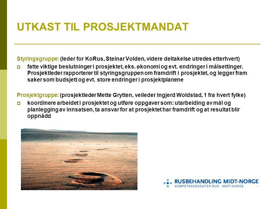 UTKAST TIL PROSJEKTMANDAT Styringsgruppe: (leder for KoRus, Steinar Volden, videre deltakelse utredes etterhvert)  fatte viktige beslutninger i prosjektet, eks.