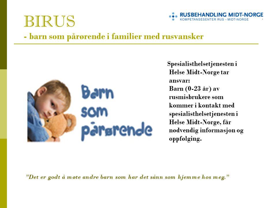 BIRUS - barn som pårørende i familier med rusvansker Spesialisthelsetjenesten i Helse Midt-Norge tar ansvar: Barn (0-23 år) av rusmisbrukere som kommer i kontakt med spesialisthelsetjenesten i Helse Midt-Norge, får nødvendig informasjon og oppfølging.