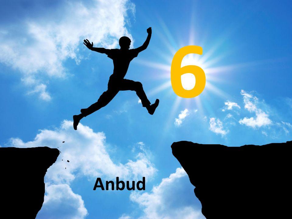 6 Anbud