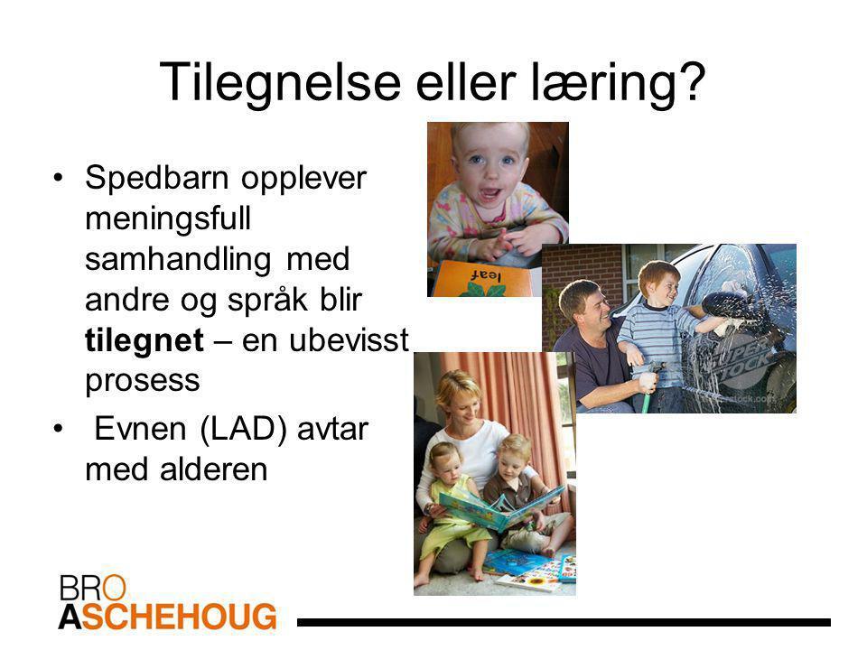 Tilegnelse eller læring? Spedbarn opplever meningsfull samhandling med andre og språk blir tilegnet – en ubevisst prosess Evnen (LAD) avtar med aldere