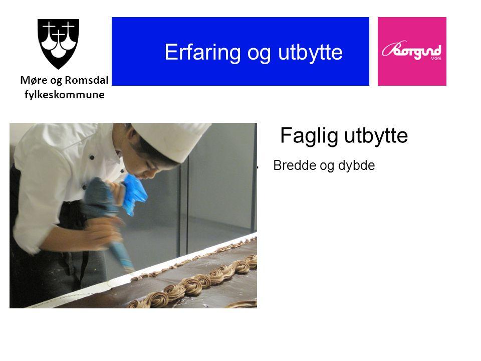 Borgund vgs Erfaring og utbytte Faglig utbytte  Bredde og dybde Møre og Romsdal fylkeskommune