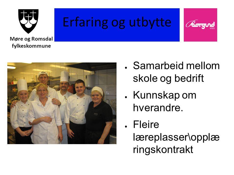 Borgund vgs Erfaring og utbytte ● Samarbeid mellom skole og bedrift ● Kunnskap om hverandre.