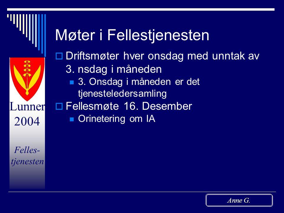 Lunner 2004 Felles- tjenesten Anne G. Endret oppgaveløsning  Postføring overføres til Servicetorget  Rune arbeider med hjemmesider/internett og bruk