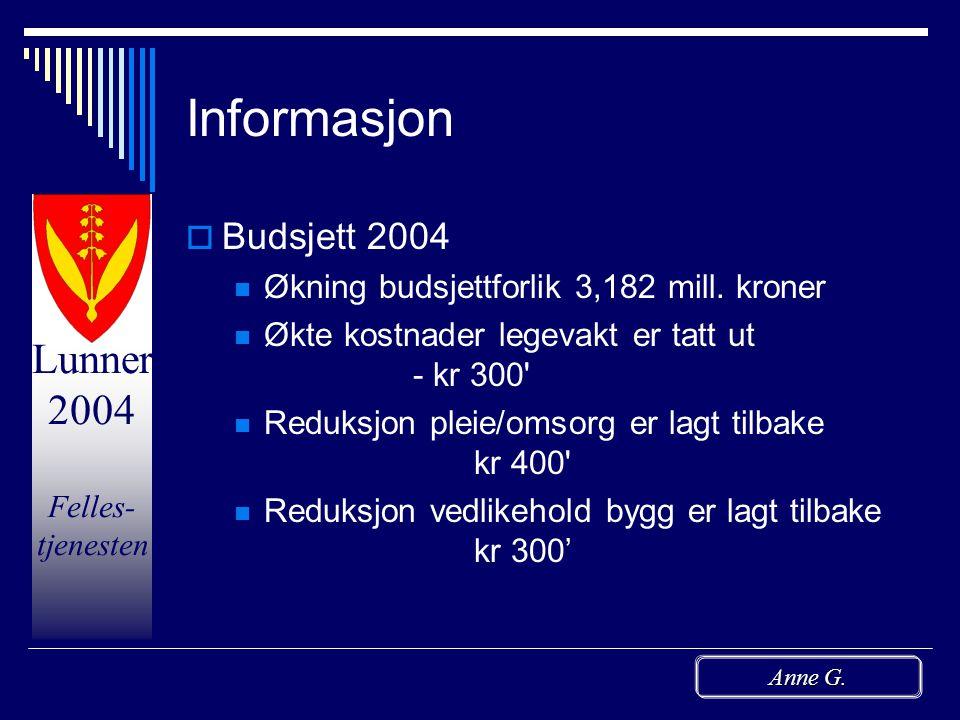 Lunner 2004 Felles- tjenesten Anne G. De skinnende øyeblikk  Positive tilbakemeldinger  Stå-på-vilje  Positive til å prøve nye ting