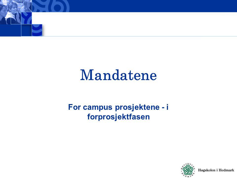 Mandatene For campus prosjektene - i forprosjektfasen