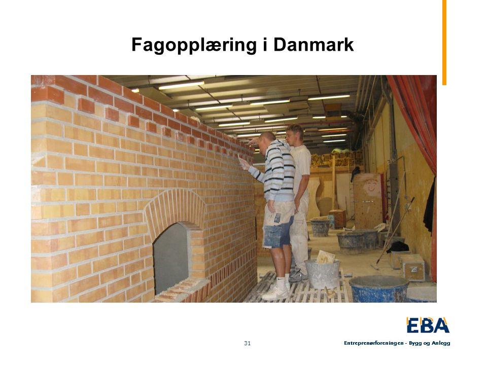 31 Fagopplæring i Danmark