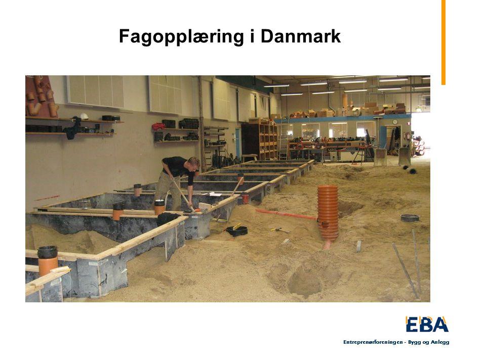 32 Fagopplæring i Danmark