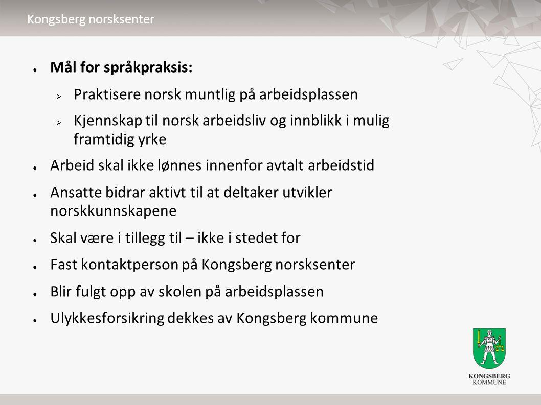 ● Mål for språkpraksis:  Praktisere norsk muntlig på arbeidsplassen  Kjennskap til norsk arbeidsliv og innblikk i mulig framtidig yrke ● Arbeid skal