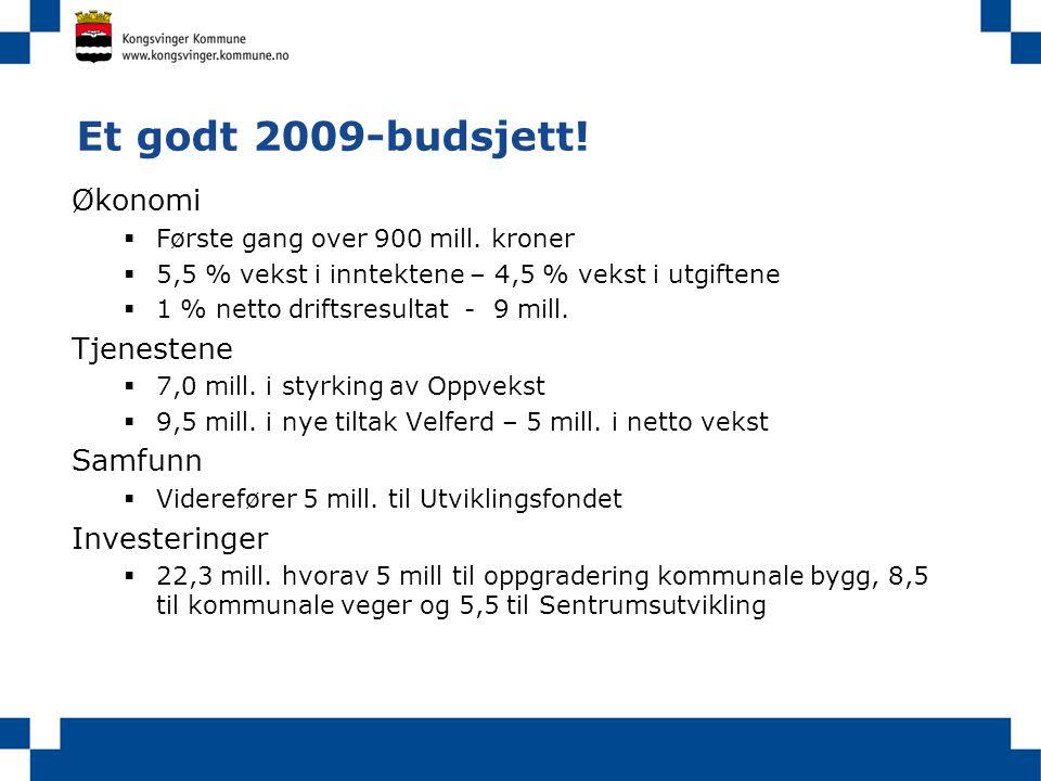 Et godt 2009-budsjett! Økonomi  Første gang over 900 mill. kroner  5,5 % vekst i inntektene – 4,5 % vekst i utgiftene  1 % netto driftsresultat - 9