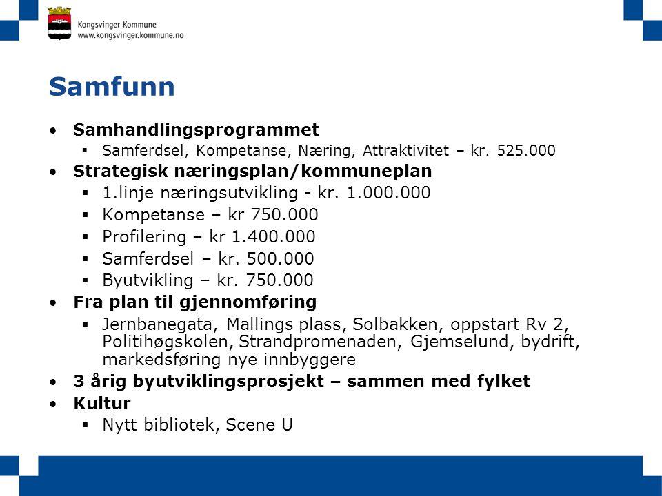Samfunn Samhandlingsprogrammet  Samferdsel, Kompetanse, Næring, Attraktivitet – kr. 525.000 Strategisk næringsplan/kommuneplan  1.linje næringsutvik