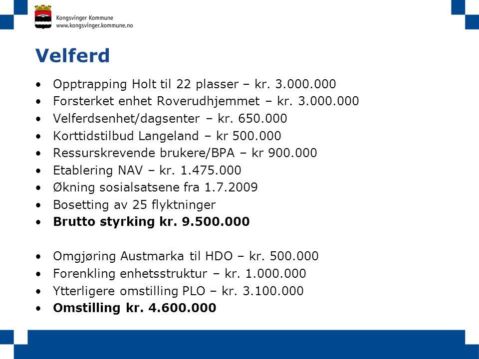 Velferd Opptrapping Holt til 22 plasser – kr. 3.000.000 Forsterket enhet Roverudhjemmet – kr. 3.000.000 Velferdsenhet/dagsenter – kr. 650.000 Korttids