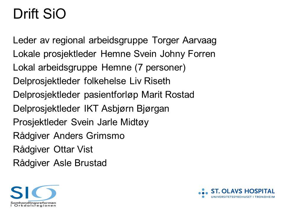 Drift SiO Leder av regional arbeidsgruppe Torger Aarvaag Lokale prosjektleder Hemne Svein Johny Forren Lokal arbeidsgruppe Hemne (7 personer) Delprosj