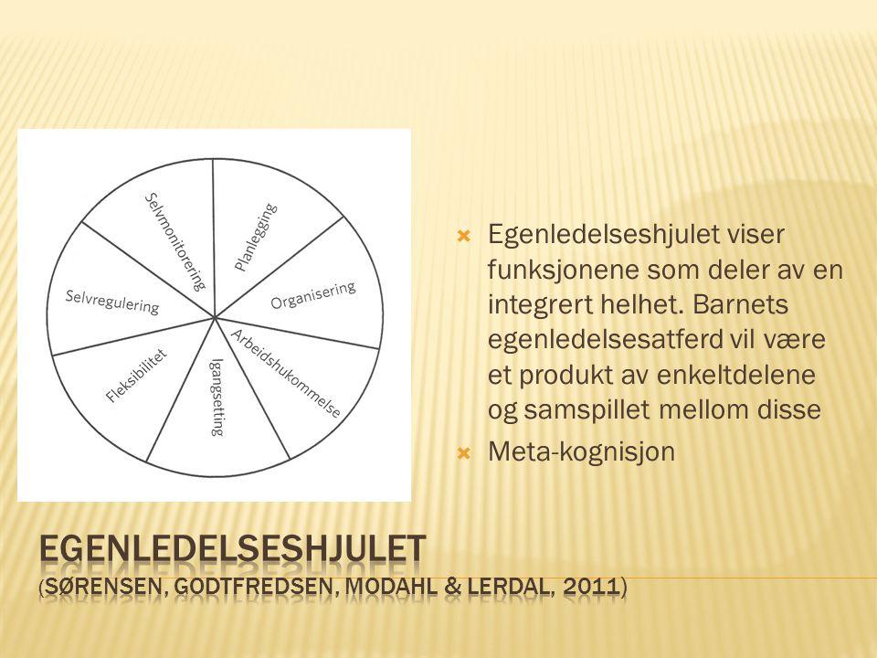  Egenledelseshjulet viser funksjonene som deler av en integrert helhet. Barnets egenledelsesatferd vil være et produkt av enkeltdelene og samspillet