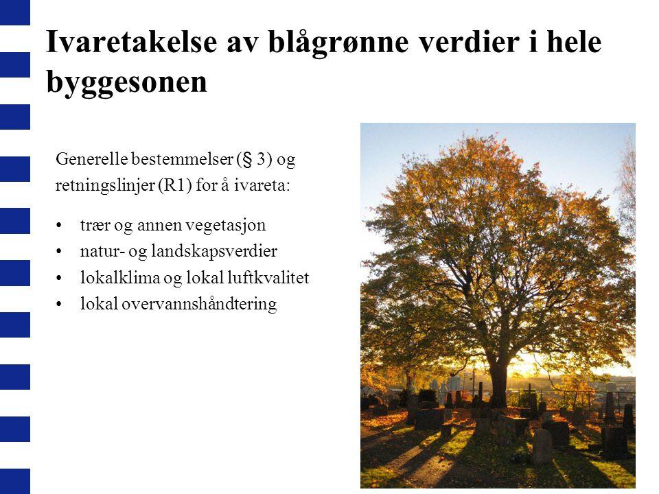 Ivaretakelse av blågrønne verdier i hele byggesonen Generelle bestemmelser (§ 3) og retningslinjer (R1) for å ivareta: trær og annen vegetasjon natur-