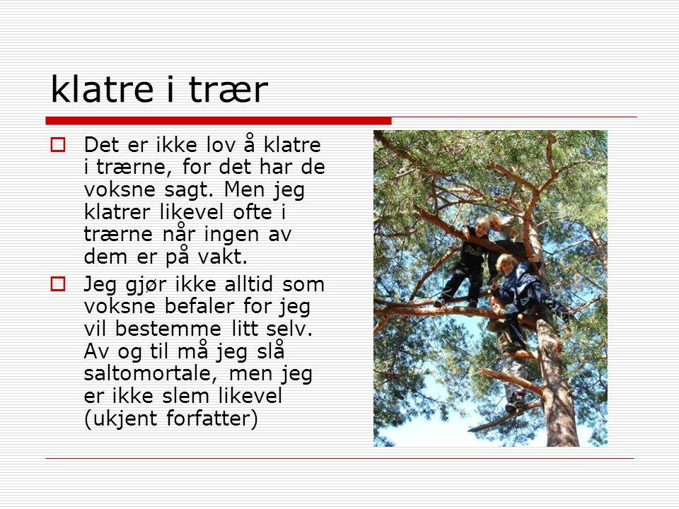 klatre i trær  Det er ikke lov å klatre i trærne, for det har de voksne sagt. Men jeg klatrer likevel ofte i trærne når ingen av dem er på vakt.  Je