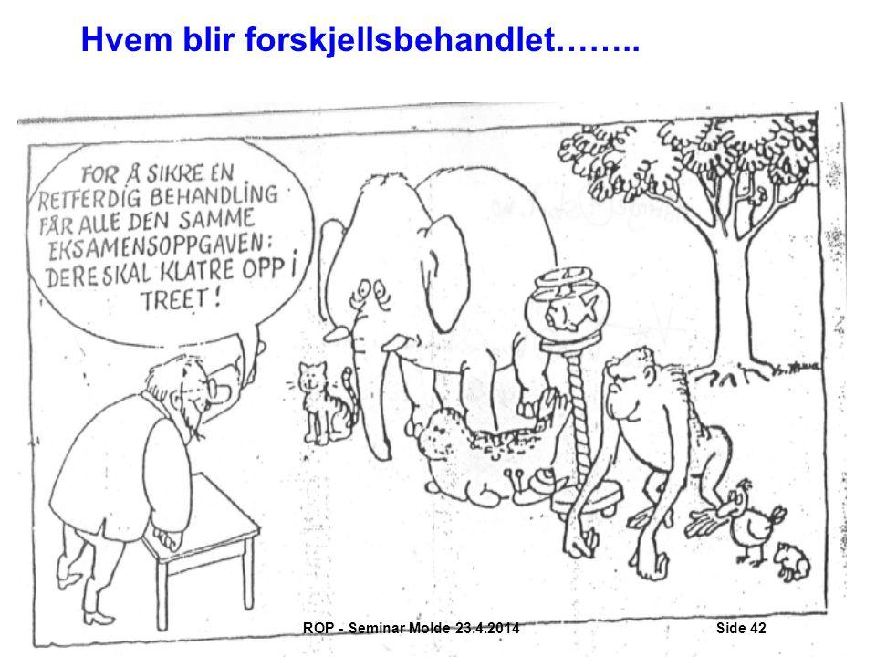 Hvem blir forskjellsbehandlet…….. ROP - Seminar Molde 23.4.2014Side 42