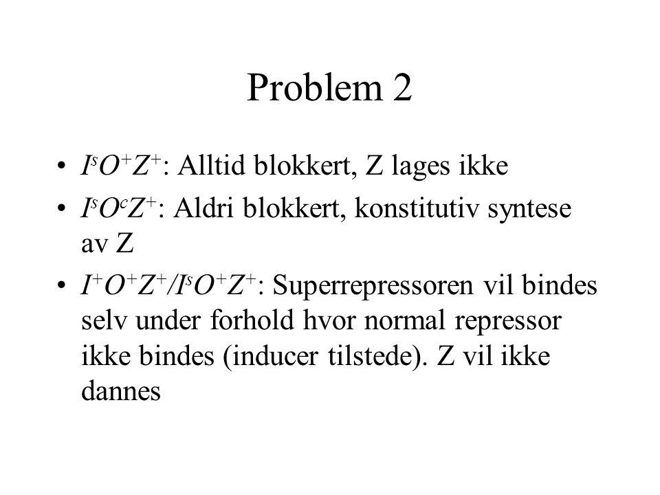 Problem 2 I s O + Z + : Alltid blokkert, Z lages ikke I s O c Z + : Aldri blokkert, konstitutiv syntese av Z I + O + Z + /I s O + Z + : Superrepressoren vil bindes selv under forhold hvor normal repressor ikke bindes (inducer tilstede).